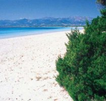 Hotels in Olbia